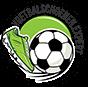 De Voetbalschoenen Expert